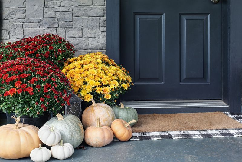 Fall: Time to plant those mums!