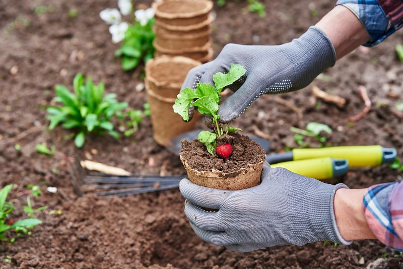 3 reasons to never garden without gloves