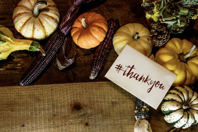 Give Thanks for these 6 Websites and Apps this Thanksgiving