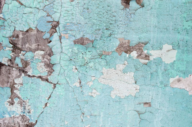 The lead based paint disclosure